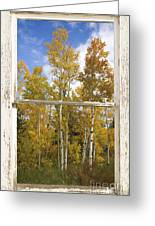 Colorado Autumn Aspens Picture Window View Greeting Card