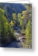 Colorado Left Hand Creek Boulder County Autumn View Greeting Card