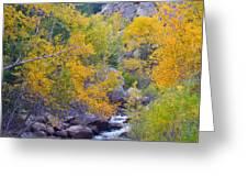 Colorado Rocky Mountain Autumn Canyon View Greeting Card