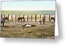 Colorado: Roping A Steer Greeting Card