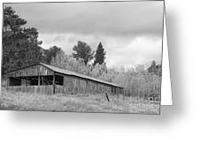 Colorado Rustic Autumn High Country Barn Bw Greeting Card