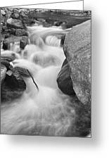 Colorado St Vrain River Trance Bw Greeting Card