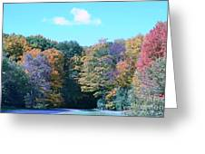 Colored Trees Greeting Card