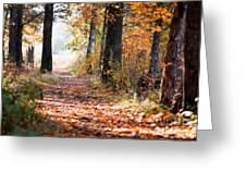 Colorful Autumn Landscape Greeting Card