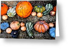 Colorful Fall Harvest Greeting Card