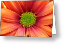 Colorful Fantasy Greeting Card