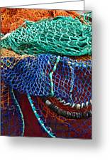 Colorful Fishing Nets 2 Greeting Card
