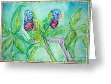Colorful Lorikeet Couple Greeting Card by M C Sturman