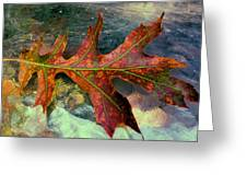Colorful Oak Greeting Card