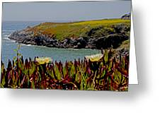 Colorful Point Greeting Card