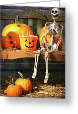Colorful Pumpkins And Skeleton On Bench Greeting Card