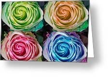 Colorful Rose Spirals Greeting Card