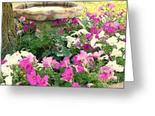 Colorful Summer Day Greeting Card