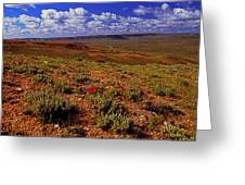 Colorful Valley From Fossil Lake Trailsil Bu Greeting Card
