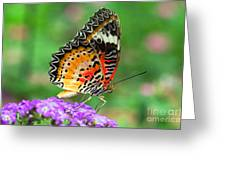 Colorful Wing Greeting Card