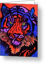 Colorfull Tiger Greeting Card