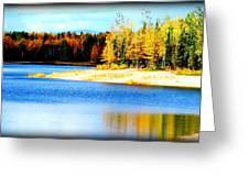 Colors At Chena Greeting Card