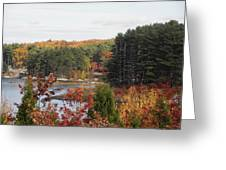 colors of fall in New England Greeting Card