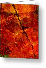 Colors Of Nature 3 Greeting Card