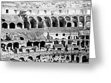 Colosseum In Rome Itlay - Interior - C 1904 Greeting Card