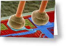Coloured Sem Of Integrated Circuit Micro-wires. Greeting Card