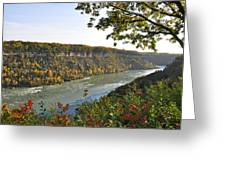 Colours Of The Fall In The Niagara Glen Greeting Card