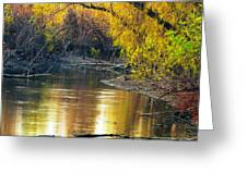 Columbia Bottoms Slough II Greeting Card