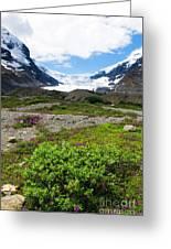 Columbia Icefield Greeting Card