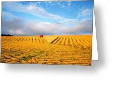 Combine Harvesting, Wheat, Ireland Greeting Card