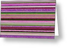 Comfortable Stripes Lll Greeting Card