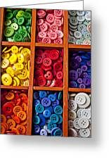 Compartments Full Of Buttons Greeting Card by Garry Gay