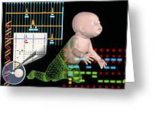 Computer Artwork Depicting Baby's Paternity Test Greeting Card