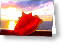 Conch Sunset Greeting Card