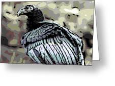 Condor Profile Greeting Card