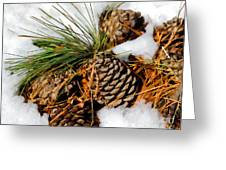 Cones In The Melt Greeting Card