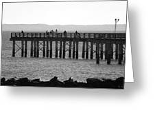 Coney Island Pier In Black And White Greeting Card