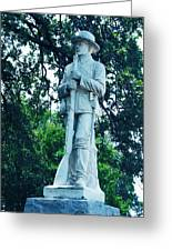 Confederate Soldier Memorial Greeting Card