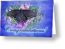 Congratulations Greeting Card - Spicebush Swallowtail Butterfly Greeting Card