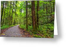 Conkle's Hollow State Park Greeting Card
