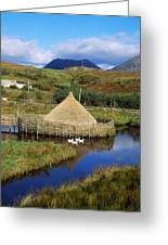 Connemara Heritage And History Centre Greeting Card