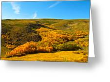 Conway Summit Fall Color Greeting Card
