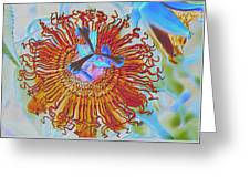 Copper Passionflower Greeting Card by Rosalie Scanlon