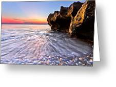 Coquillage Greeting Card