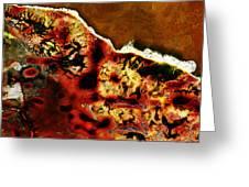 Coral 1  Greeting Card