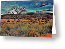 Coral Dunes Greeting Card
