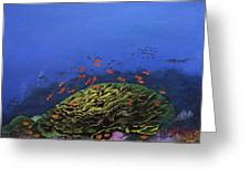 Coral Head Greeting Card