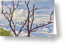 Corella Tree Greeting Card