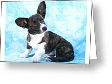 Corgi 465 Greeting Card