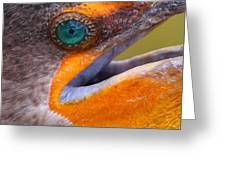 Cormorant Abstract Greeting Card