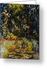 Corner Of A Pond With Waterlilies Greeting Card